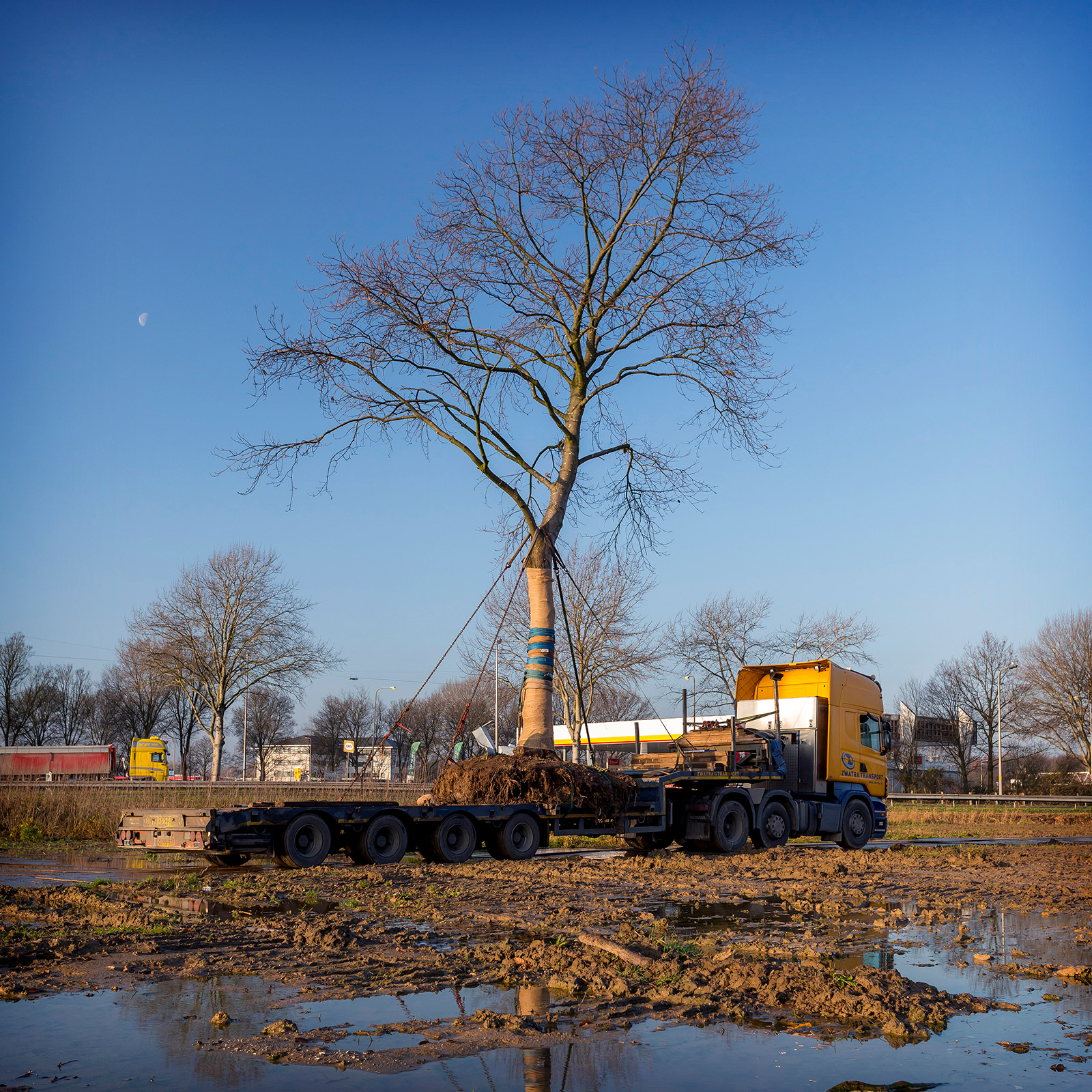 Bestemmingsplan Bedrijvenpark Ambachtsezoom onherroepelijk